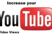 provide more than 6000 Youtube Views to your Video [Fastest and one of the Oldest and Trusted Seller here]