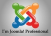 help you to create professional Joomla website and solve your problems