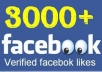 add 3000++ facebook likes or fans in less Than 24 Hours