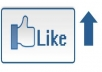 invite 1,000 of my friends to like your fanpage and promote your link or website to 12,000 friends and subscribers