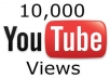give 10,000+ youtube views within 24 hours