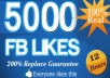 get youn 5000+ Fully Real [Repleace Guaranteed] facebook likes to your fanpages in less then 12 hours ~~!!~~