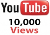 provide more than 10,000 Youtube Views to your Video