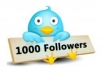 add 1000+ twitter followers on your twitter account