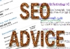 give you expert seo advice for ur website