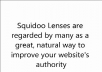 create a basic Squidoo lens for you to help you improve your search engine rankings and also include the link of your choice