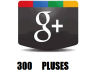 increase your site or google plus with 300 google pluses