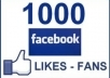 give you 1000 to 1200 Real looking facebook likes or fans to your facebook fanpages, all likes deliver within 72 hours