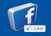 provide you 388+ Facebook Like 100% real on your website, real work delivery Only