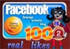 give 100+ real like facebook fans USA, uk for your facebook fanpage with fast delivery!!!!