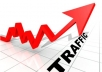send you 1000 unique visitors click traffic to your site
