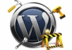fix one minor problem on your Wordpress blog or add a function or feature ...!!!!