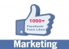 give you 1,000 Real Facebook Active WorldWide Likes for