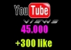 give your YouTube Video Over 45000 Views + 300 Likes  Guaranteed within 48hours - 98 hours