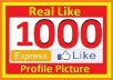 give 1000+ High Quality Real, Active and Permanent Facebook Likes or Fans to your facebook fan Page