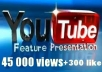 give your YouTube Video Over 45000+ Views + 300+ Likes Guaranteed within 48hours - 98 hours