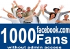 provide you 1000 to 1200 real facebook likes
