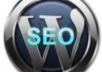 install Wordpress and your theme, necessary plugins plus backlinks bonus.........
