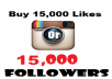 Give You 10,000+ Instagram Likes Or Followers Instant Delievery
