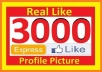 give 3000+ High Quality Facebook Likes or Fans to your facebook fan Page, all likes deliver within 1 day ...!!!!!!!!