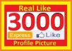 give 3000+ High Quality Facebook Likes to your facebook fan Page, all likes deliver within 1 day for $15