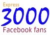 add 3000+ Looking real facebook likes/facebook fans mostly USA users in your fanpage, no admin access in just 16 hours !!!!!!!!!!!!!