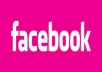 Get you 400+ Facebook Like 100% real on your website, real work delivery Only