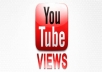 give your YouTube Video Over 9000+ Unique Real Views Guaranteed within 48hrs to 96 hrs