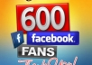 Get You 600 Verified Facebook Likes