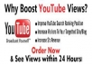 give you guaranteed 35,000 youtube views to your youtube video, all views deliver within 96 hours ..@