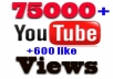 give your YouTube Video Over 75000+ Views + 600 Likes +  Guaranteed within 72hours - 98 hours