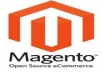 provide MAGENTO installed under professional hosting 20 GB