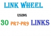 create 30  Profile Links for your website from PR7+ Domain with mixed do follow, anchor text, viewable, verified panda and penguin safe