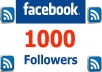 add 1000 REAL Facebook Followers [Subscribers] to your Personal Facebook Page within 24 hours !!!!!!!!!!!!!!!