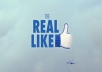 add 450+ Real Facebook Likes to Your Website or Blog {No Fanpage} Facebook Likes within 24 Hours