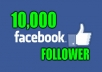 deliver 10000 facebook follower to your profile