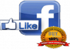 2.000 Genuine High Quality REAL Facebook Fan Page Likes