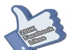provide 200k facebook fan page likes