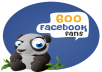 600 Real Facebook Likes only within 24 hours
