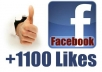 give you 1100 Facebook Likes to your Facebook fanpag, photo, post, website in 24 hours