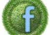 get you 1700+ Facebook likes with USA names and profile pic tures within 4 8 hours T o your fanpage