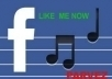 provide 1003+ facebook like your account