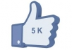 Give You 5,000+ Real Facebook Likes Within 12-Hours