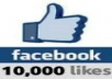give you 10000 Real and active Facebook Fans