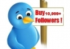 Give You 10999+ Real Twitter Followers