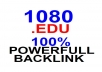 create 1080 EDU backlink different domain with permanent wiki backlink for your website seo backlink