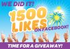   give 1500+ Facebook Likes Best Quality Profiled Users to your Fan Page in less than 12 hours without admin access Facebook&trade;