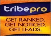 promote TWO links through TribePro so that each one gets shared syndicated at least 1,235 times