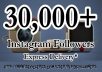 Give You 30,000+ Real Instagram Followers[no bots/Proxy]To Your Account[Staying Forever]in Just 24 hours