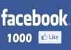 give you 2000 facebook likes or followers within 3 dsys